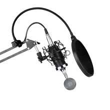 ERBM-800 Condenser Microphone & NW-35 Scissor Arm Stand XLR Cable  &  Adapter Kit professional recording microphone music create