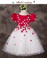 2017 new Children ballet dress Female dance clothes dress short sleeve tulle dress girl leotard Ballet Tutu costume 2 color