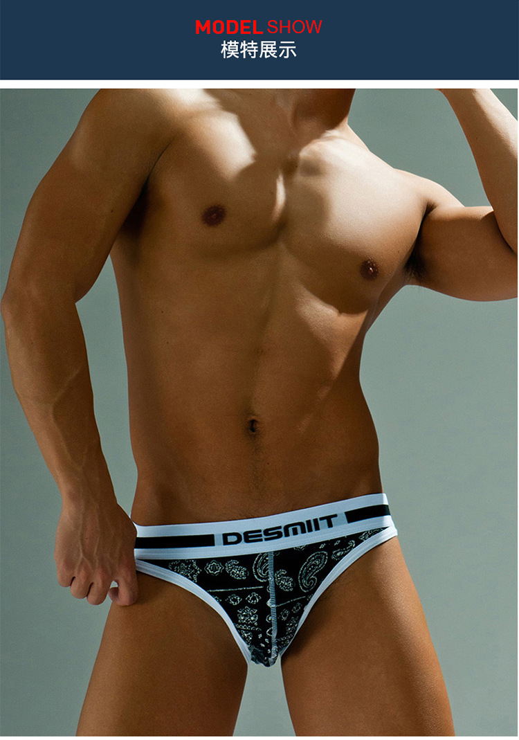 Topdudes.com - Men's High Quality Low Waist Sexy Comfortable Briefs Underwear