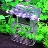 Multifunctional High Clear Fish Breeding Isolation Box Aquarium Breeder Fish Tank Double Guppies Hatching Incubator