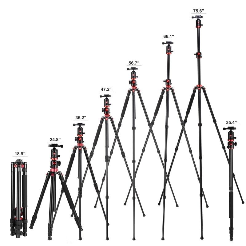 ZOMEI M8 Camera Tripod Portable Monopod Overhead -4