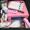 Pro 36W UV GEL Pink Lamp & 15 Brush 100pcs Nail Tips Nail Art Tool Kits #24