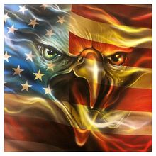 Diamond Embroidery American eagle flag 5d DIY Painting Cross Stitch Rhinestones Full Square Mosaic Z133