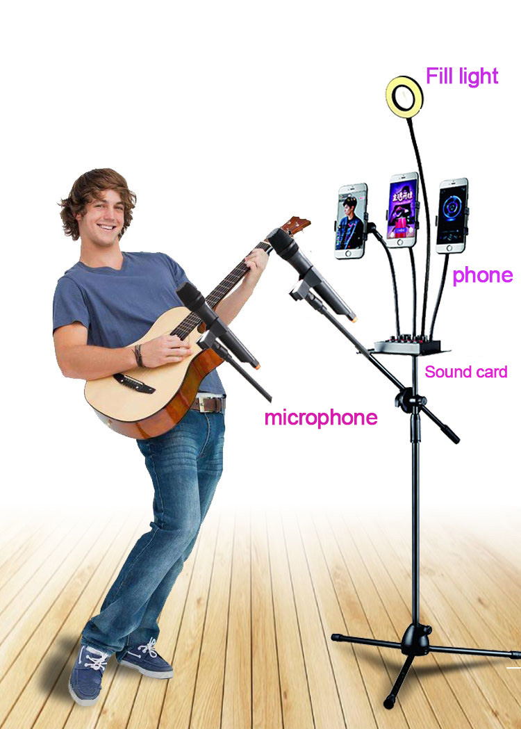 Ring Light and Floor Stand Mic Holder 1
