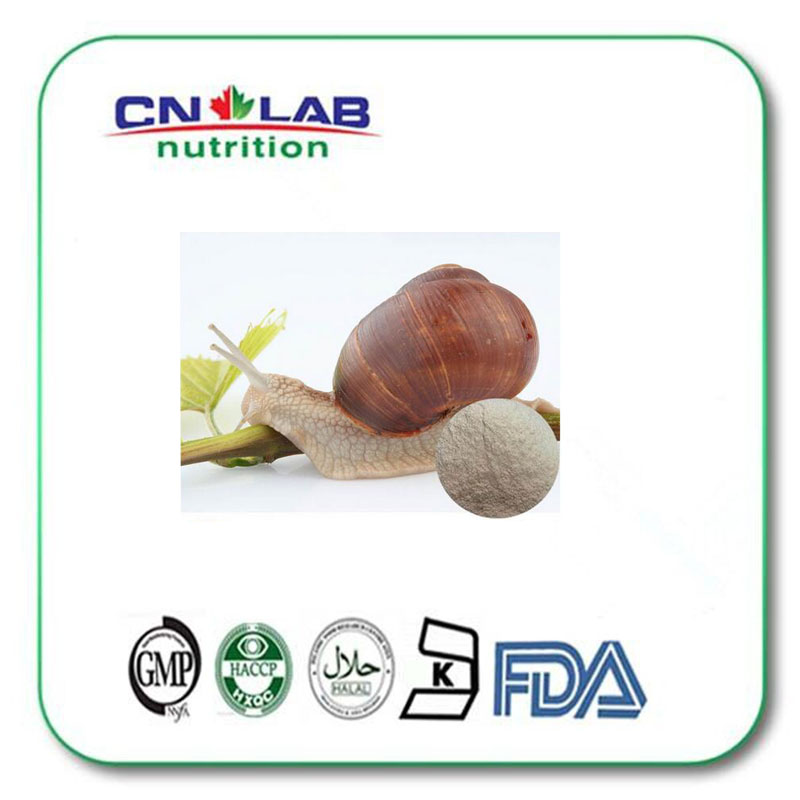 Skin care product Natural Snail Extract/Snail slime Extract powder 10:1 1000g hot sale 1000g natural curcumin extract turmeric powder arthritis prevention 95% curcuminoids new