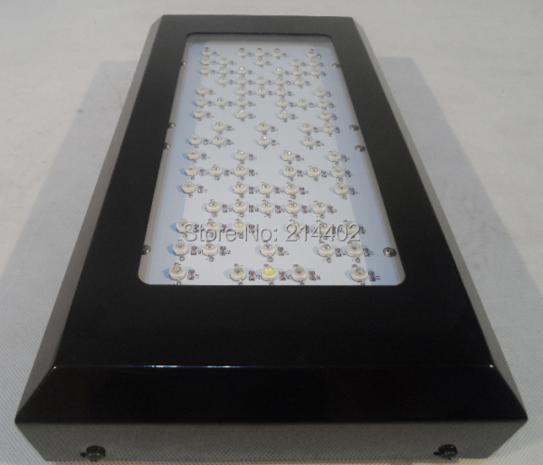 Promotion 240W(80*3W) Led Hydroponics Lighting with high quality with 3years warranty,dropshipping