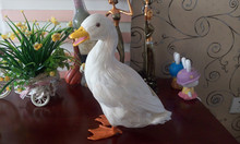 simulation duck large 27x24cm white duck model toy polyethylene & feathers duck handicraft ,decoration gift t402