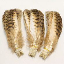 Top Quanlity 10pcs/lot Natural Eagle Bird Feathers 10-12inches/25-30cm