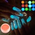 1g/bottle Fluorescence Nail Glitters DIY Nail Art Decorations Luminous Powder Dust, Grow In Dark Glitter Painting YS01-12