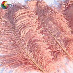 Image 4 - 10 adet büyük kutup tamamen doğal deri pembe devekuşu tüyü 24 26 inç düğün parti karnaval Prop dekorasyon tüyleri