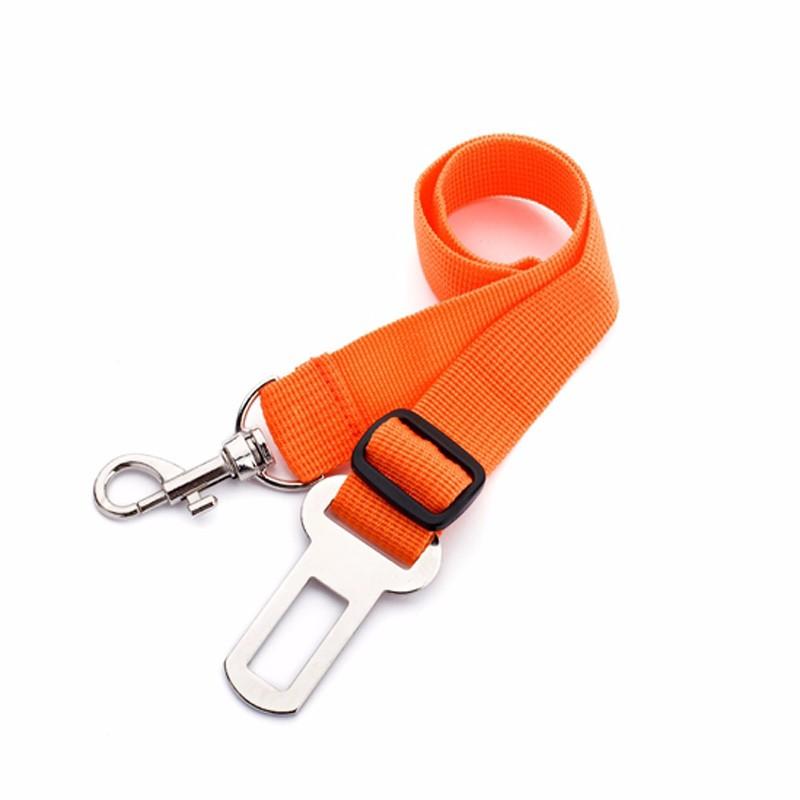 ceinture de sécurité chien voiture