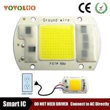 COB светодиодный чип лампы 5 Вт 20 Вт 30 Вт 50 Вт Светодиодный лампа COB 220 в 230 В IP65 Смарт IC драйвер холодный теплый белый Светодиодный прожектор чип