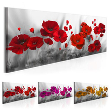 Large 5d diy Diamond painting,red poppy flower,3d mosaic Embroidery full round square rhinestone diamond pictures JS4567
