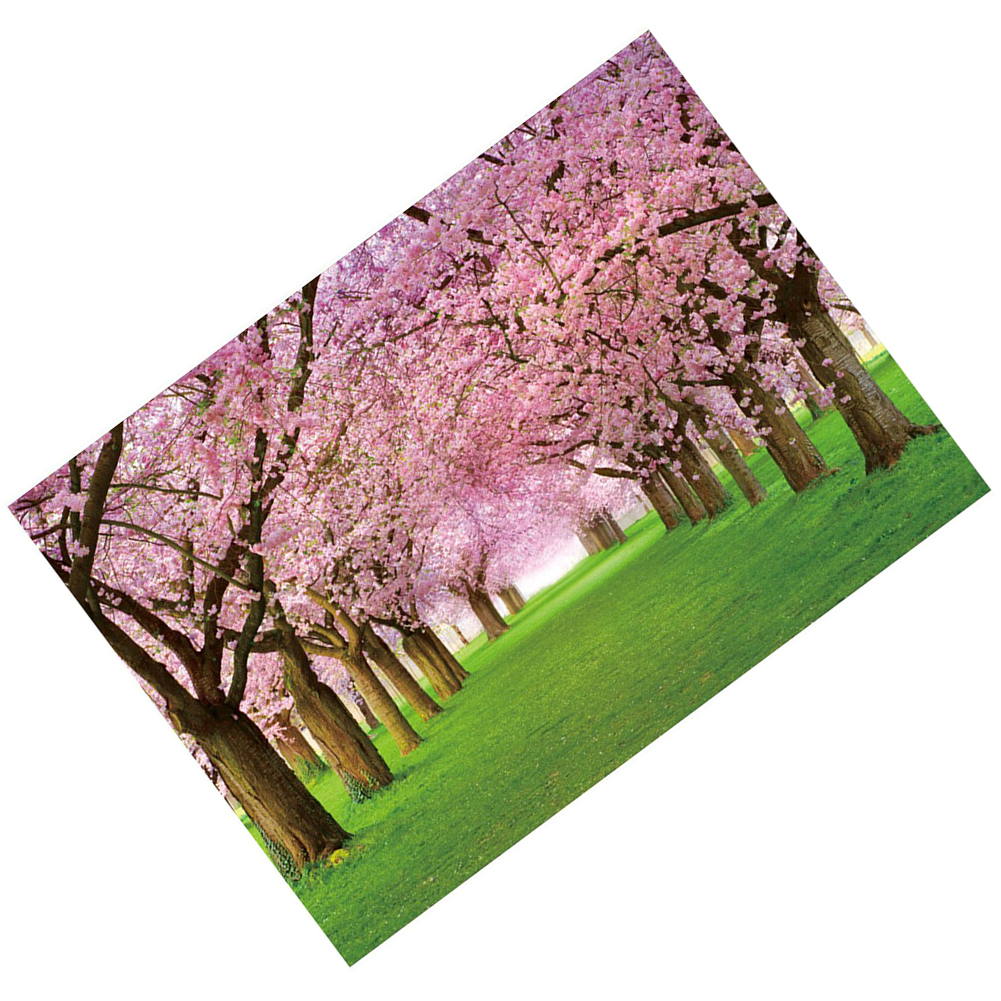 EDT-Vinyl Cherry Blossom Street and Grasses Backdrops 2.1*1.5M(7*5ft) Photography Backgrounds Photo Props for Studio or Stage