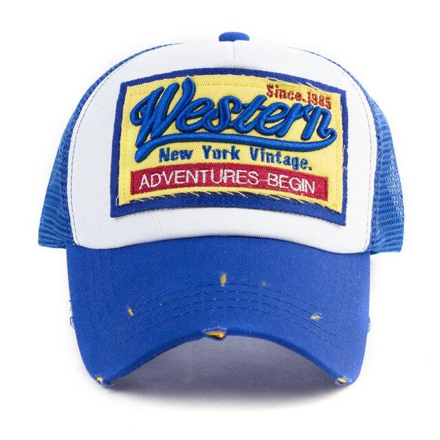 Blue Baseball net 5c64f225d79b2