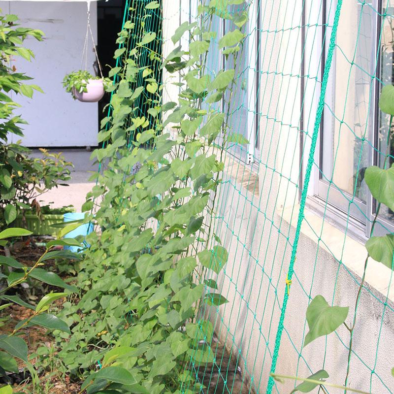 Plant Nets Nylon Trellis Netting Fruits Vining Vegetables Noylon 1.8*1.8M Garden Green Support Tool Mesh Grape Vine Grow Fence