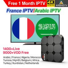 IPTV France Arabic IPTV Turkey A95X R2 Android Smart TV Box Free 1Month IPTV Code French Belgium Morocco IP TV Netherlands IP TV цены онлайн