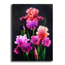 Iris Fleur Couleur Achetez Des Lots à Petit Prix Iris Fleur Couleur