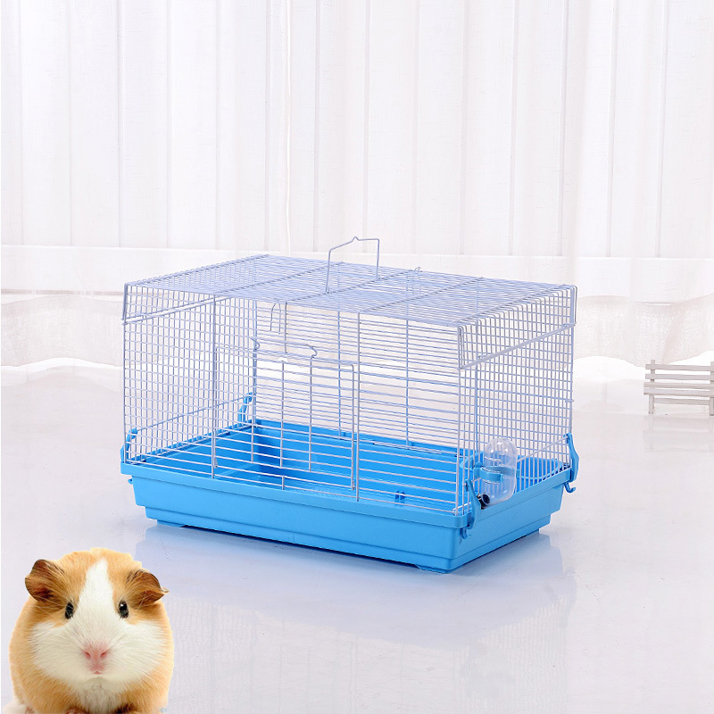 and pigs henderson ideas best toys pets on pig good feeder s other guinea for images bedding cage cute pinterest
