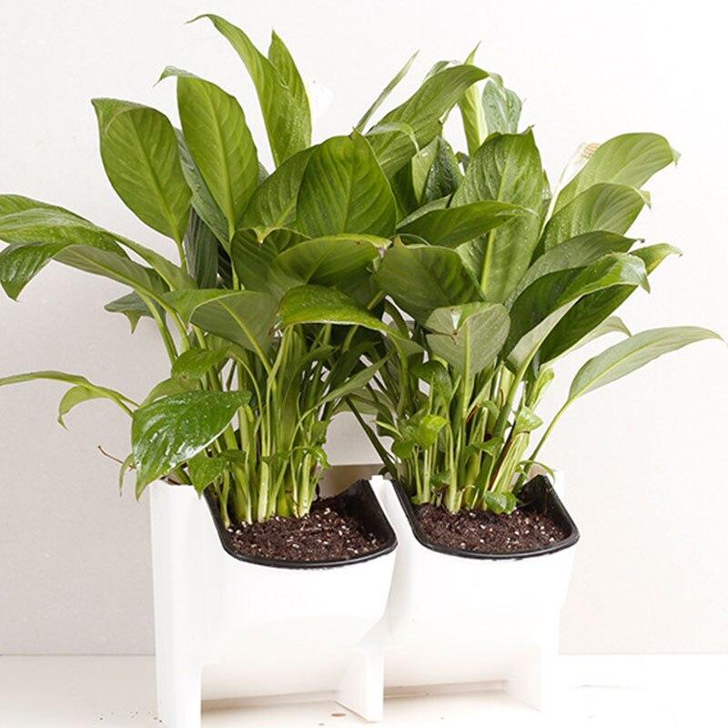 SOLEDI пластиковый цветочный горшок для растений, настенный садовый подвесной Штабелируемый садовый инвентарь, садовые ограждения, домашний декор - Цвет: Белый