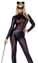 Catwoman Costume Buy Cheap