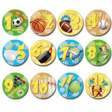 Premium New Baby Pregnant Women Monthly Photograph Stickers Fun Month 1-12 Milestone Clothes Decoration 12Pcs/Set