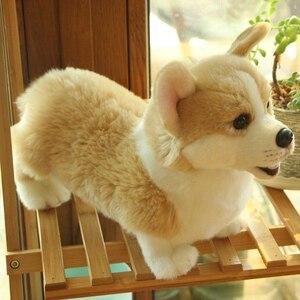 Image 3 - 32cm adorável simulação cão crianças bonecas corgi pelúcia animal de estimação macio brinquedos para crianças presente aniversário decoração coleção brinquedos