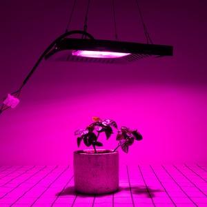 Image 3 - Volledige Spectrum Lamp Led Groeilicht 50W 100W 150W Ac 110V 220V High Power Outdoor waterdicht Voor Kas Hydrocultuur Zaaien