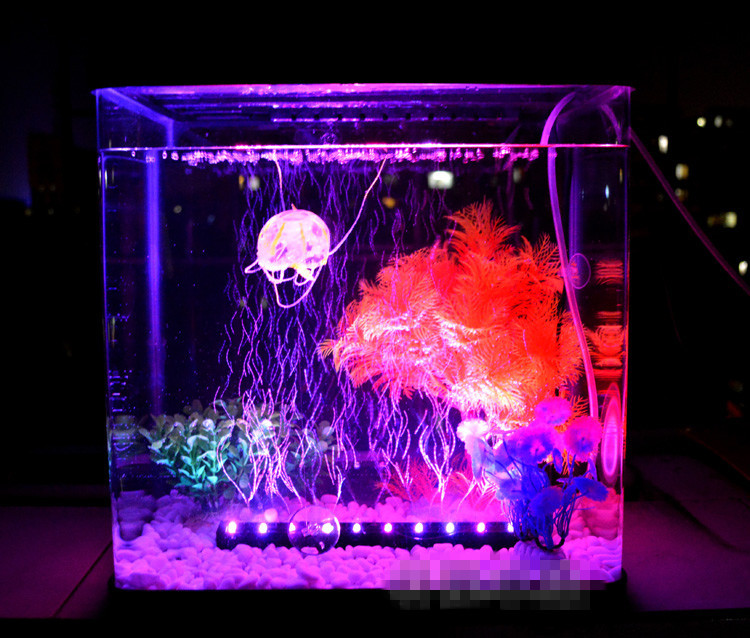 Buy deebow dee 350 led light air stone for Aquarium stone decoration