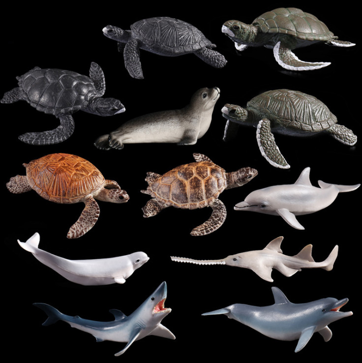 Plastic Toy Wild Seals Turtles Simulated Solid Models Emulation Action Anime Figure Kids Toys for Boys Children.