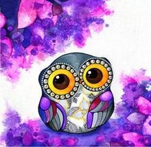 Diy Diamond Painting 50x50cm Flower & Owl Embroidery Cross Stitch Color Animal Rhinestone Mosaic Paintings