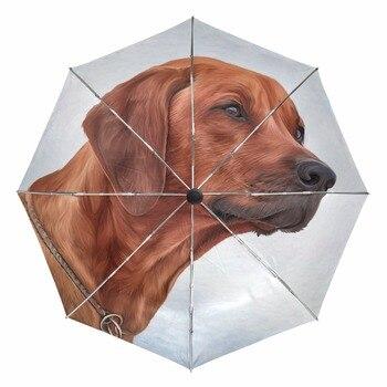 Paraguas de perro Rhodesian, paraguas de lluvia para mujer, a prueba de viento, paraguas plegables automáticos, paraguas para mujer, sombrilla, Dropshipping