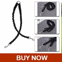 dog-leash_03