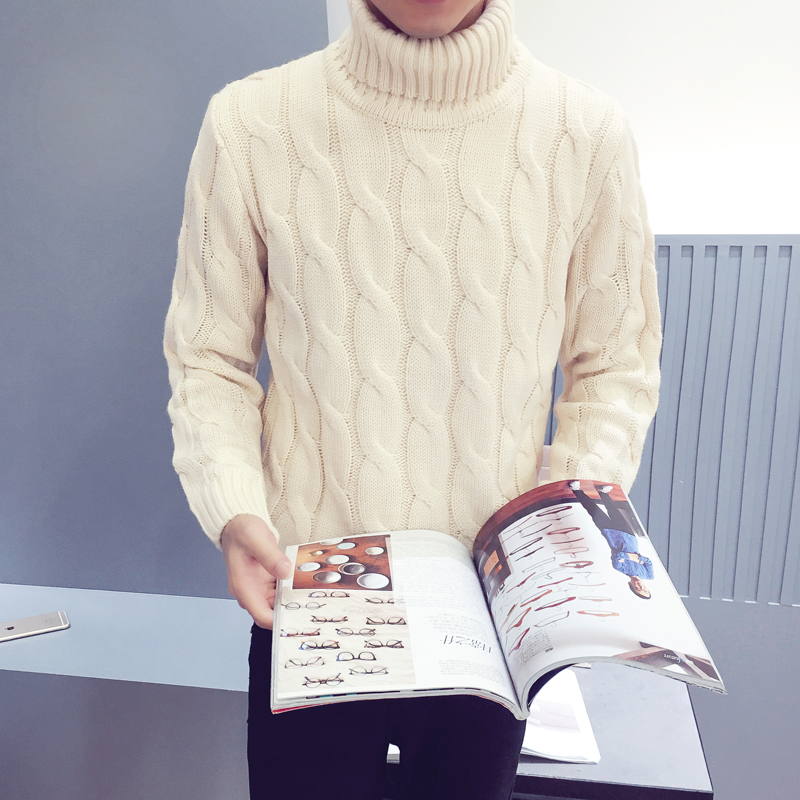 Autumn Winter New Turtleneck Sweater Male Sweater Men's Slim Underwear Shirt Fashion And Leisure High Quality Sweaters
