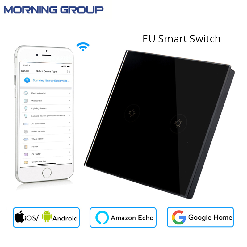 EU Type 2 Gang Socket Wifi Smart Wall Switch Mobile App Remote Control Works with Amazon Alexa Google Home No Hub Required