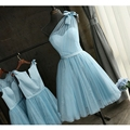Baby Blue Bridesmaid Dresses Short Tulle With Lace Elegant Dresses