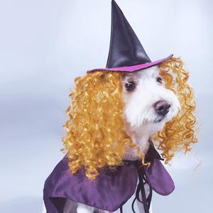 New Halloween Cosplay Witch Pu