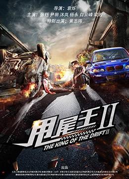 《甩尾王2》2018年中国大陆动作电影在线观看