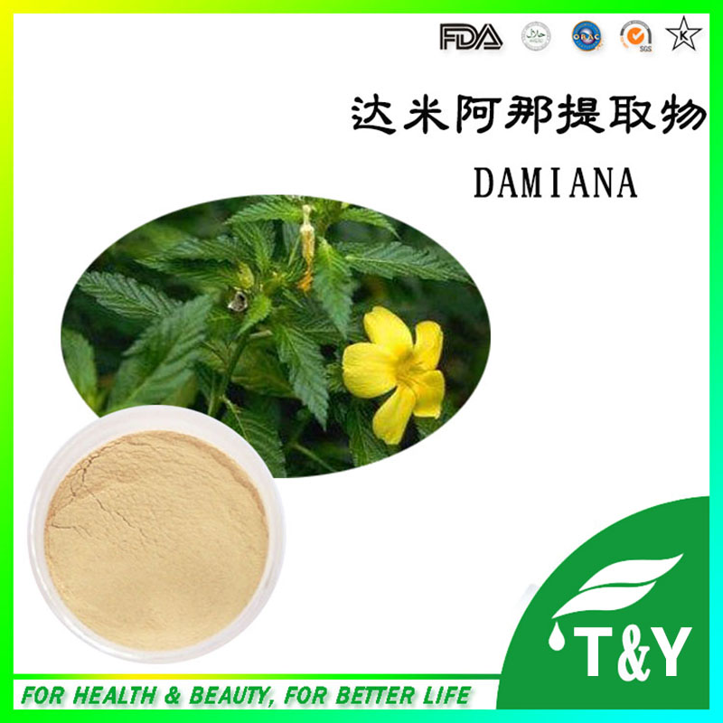 ФОТО Manufacturer Supply Natural Damiana Extract 10:1/Damiana Leaf Extract powder 400g/lot
