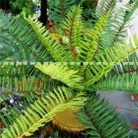 23 Baş Yapay Phoenix Fern Palm Evergreen Yaprak Bitki Ağaç Yok Pot Vazo Noel Ev Sago Dekor Yeşil AT018