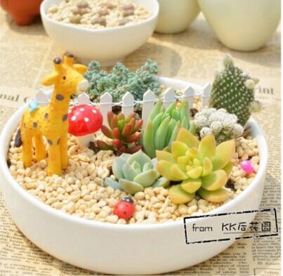 ღ ƹ ӝ ʒ ღ052738 Gemuk Tanaman Bunga Melingkar Keramik Desktop