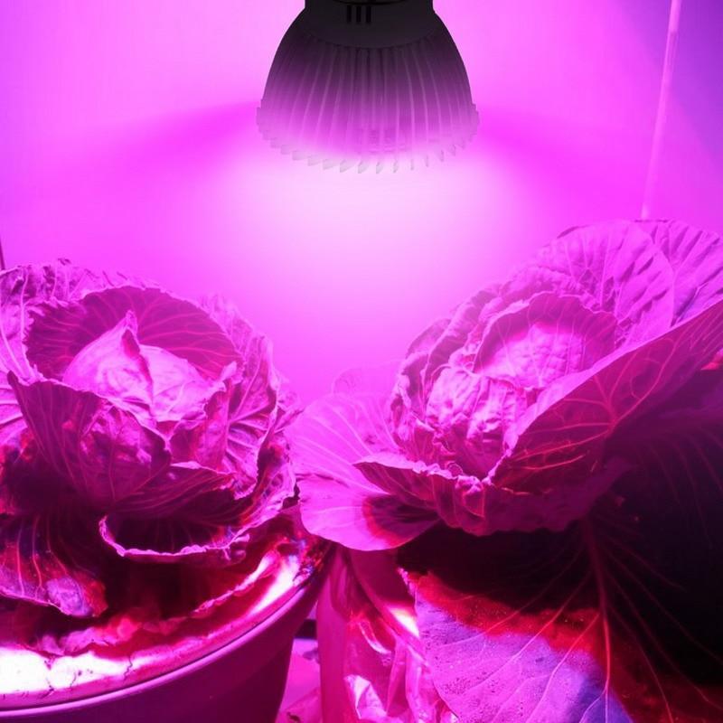 5 pcs espectro completo crescer lampada e27 04