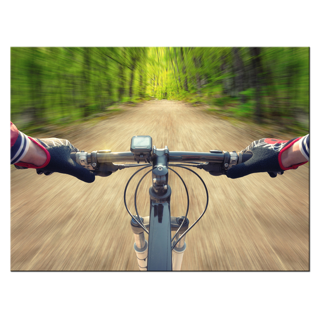 Extreme Sports Canvas Paintings HD Print Mountain Bike Poster ...