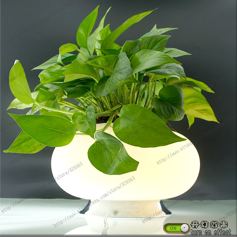 Wholesale freeshipping morden fashion vase plant table for Deco table multicolore