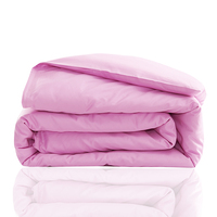 Modern Style Of Bean Paste Pure Color Polyester Fiber Bed Household Queen King Size Bed Sheet