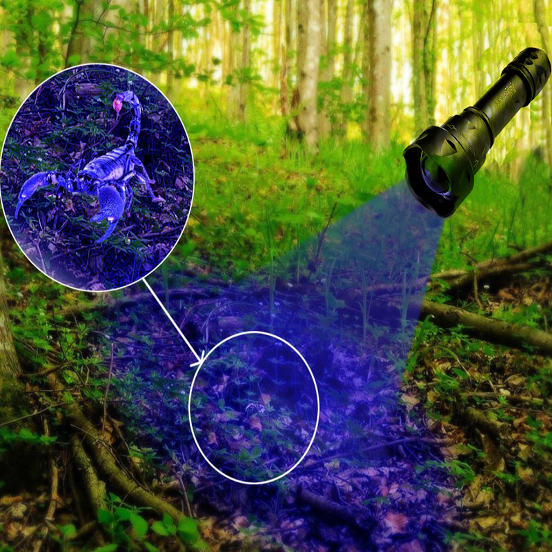 UniqueFire T20 UV 365 Flashlight LED Blacklight  Handheld Ultraviolet Torch For Pet Dog And Cat Urine Find Detects Human Fluids portable clinic clinical pet animal dog and cat refractometer rhc 300 atc blood protein serum urine plasma