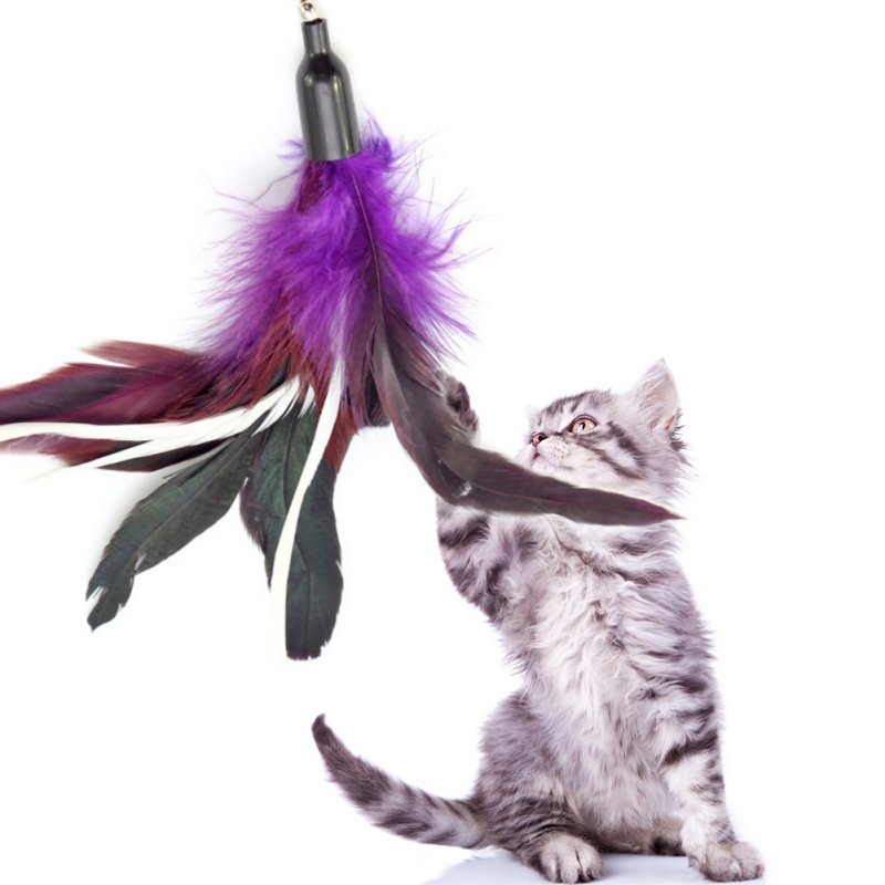 2017 Fit For Life Replacement Feathers Pack Plus Soft Furry Tail Interactive Cat and Kitten Toy Cat Toys Funny 6 Pcs D1