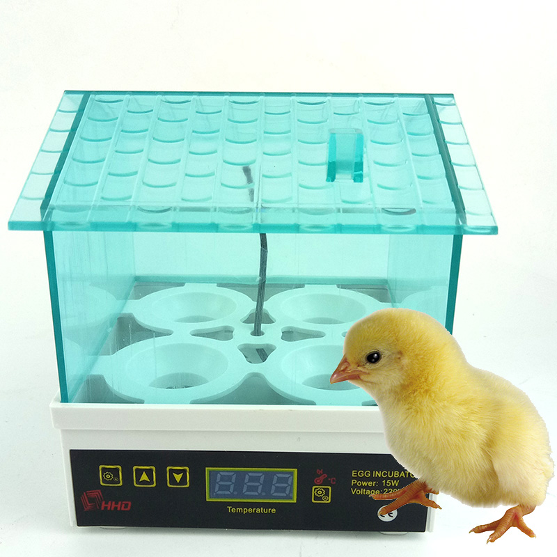 4 Eggs Digital Temperature Mini Chicken Egg Incubator Controller Duck Bird Thermostat Hatcher Brooder Incubadora Educational Toy cheap price china automatic digital temperature small brooder chicken duck egg incubator controller 12 egg incubator for sale