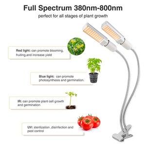 Image 4 - Phytolamp 50W Led לגדול אור ספקטרום מלא מנורת עבור בעציץ ירקות פרח 88 נוריות Dimmable צמחים מנורות