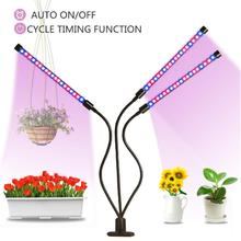 USB Grow Light LED Lamp For Plants  Full Spectrum Indoor Plant Tent Growing With Controller